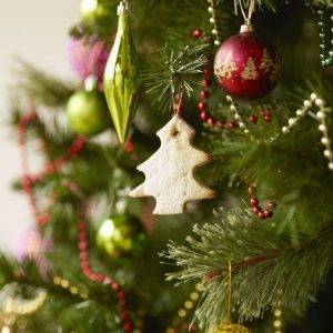 """St. Maximilian Kolbe Christmas Tree Display 2019"""